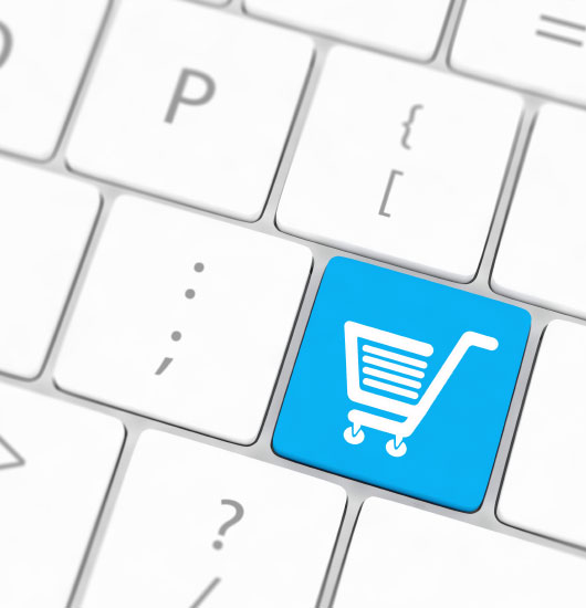 ecommerce-organic-search