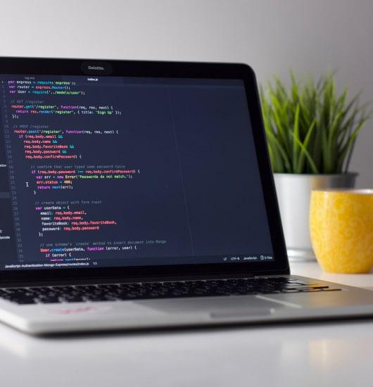 web-development-beauty